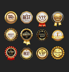 sign for brand product or vip icon with ribbon vector image