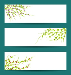 spring and flowers vector image