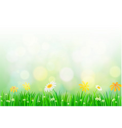 spring background with light vector image