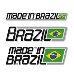made in brazil vector image