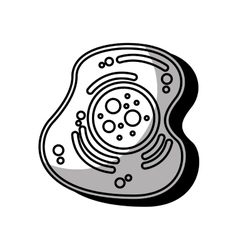 Cell structure isolated icon vector