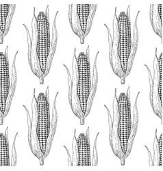 corn cob hand drawn seamless pattern vector image