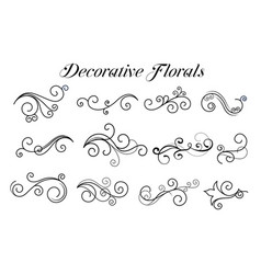 decorative swirl floral ornaments collection vector image