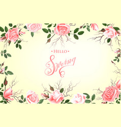 hello spring background with roses hand drawn vector image