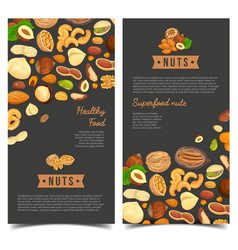 Nut food for shop poster or market banner vector