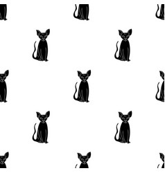 Peterbald icon in black style isolated on white vector