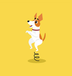 cute jack russell terrier jumping on springboard vector image