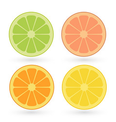 set of lemon orange lime grapefruit vector image