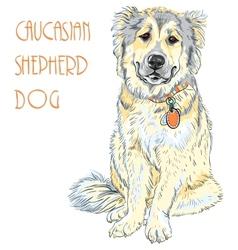 Caucasian Shepherd Dog breed vector image vector image