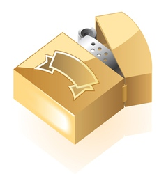 Isometric icon of lighter vector image vector image