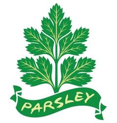 parsley label vector image vector image