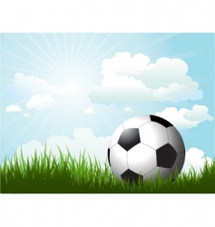 football in grass vector image vector image