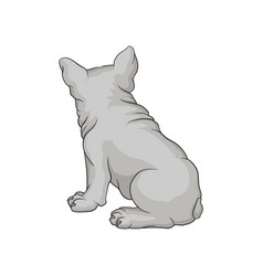back view of french bulldog or boston terrier vector image
