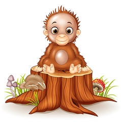 Cartoon cute a baby monkey sitting on tree stump vector