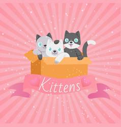 cute cartoon cats funny playful kittens pet kitty vector image