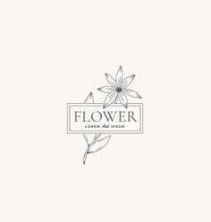 flower abstract sign symbol or logo vector image