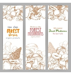 Mushroom sketch for autumn forest banner vector image vector image