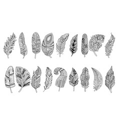 set of black hand drawn feathers with doodle vector image