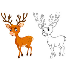 Animal outline for little fawn vector