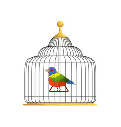 colorful tropical bird sitting on triangle swing vector image