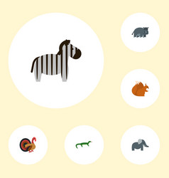 Flat icons hippopotamus trunked animal chipmunk vector