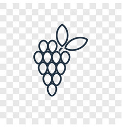 Grapes concept linear icon isolated on vector