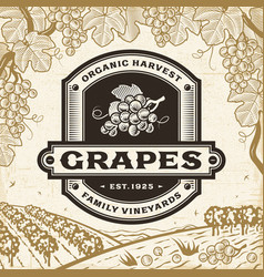 Retro grapes label on harvest landscape vector