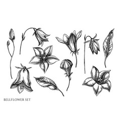 Set hand drawn black and white vector
