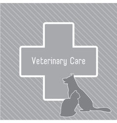 silhouettes of cat and dog on the poster Template vector image