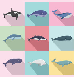 Whale blue tale fish icons set flat style vector