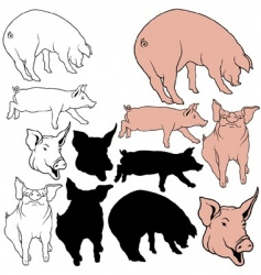 pigs set vector image vector image