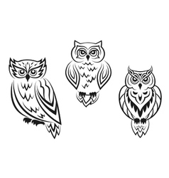Black and white owl bird tatoos vector image vector image