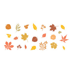 autumn leaves set fall leaf floral icons over vector image