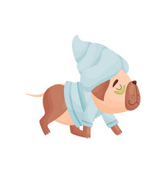 Cartoon dog in pajamas and a towel on his head vector