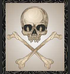 evil skull with crossed bones vector image