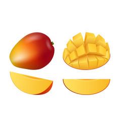 mango fruit icon set realistic style vector image