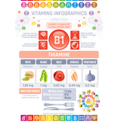 thiamine vitamin b1 food icons healthy eating vector image