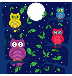 Owls in a moonlit night vector image