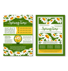 spring flowers poster or brochure template vector image