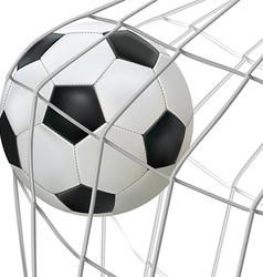 ball hit net vector image