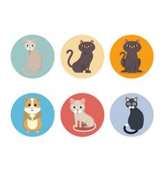 Cute mascots pet shop icons vector