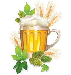 Glass of barley beer with foam vector image