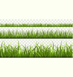 green grass borders football field summer meadow vector image