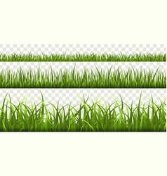green grass borders football field summer meadow vector image