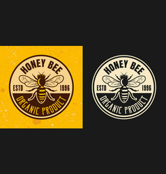 honey bee set of two colored styles emblem vector image