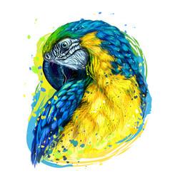 Macaw parrot hand-drawn artistic portrait vector