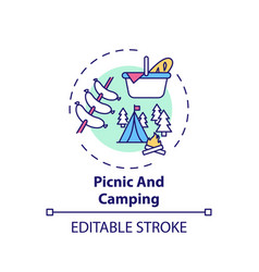 picnic and camping concept icon vector image