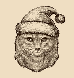 Portrait of a cute fluffy cat in a christmas hat vector