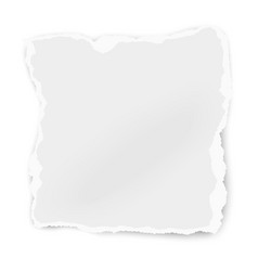Ripped paper tear isolated on white background vector