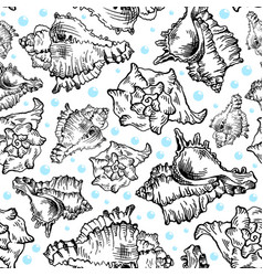 Seamless sketch seashell template background vector